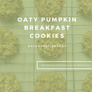 Oaty Pumpkin Breakfast Cookies by Marie Tower at MarieTower.com